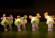 ballet-syninginn-2011-26-of-675